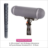 DPA 4017B Microphone with B-Stock Rycote WS3 Modular Kit