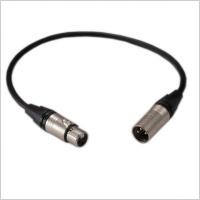 Pinknoise Short 40cm XLR Head Lead