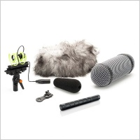 DPA d:dicate™ 4017C Compact Shotgun Microphone With Rycote Windshield